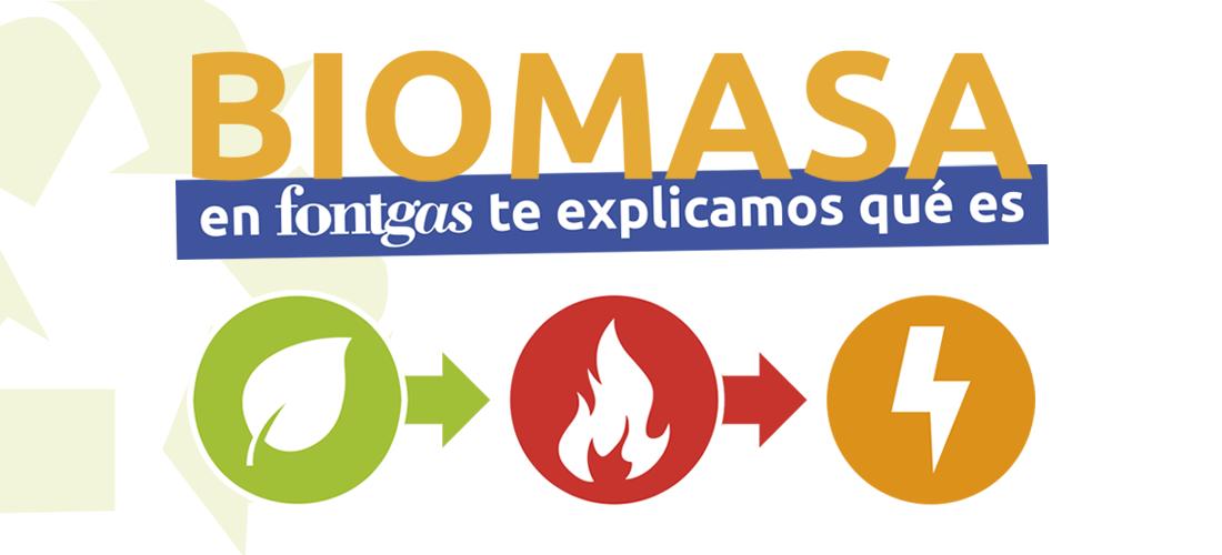 ¿En qué consiste la Biomasa?