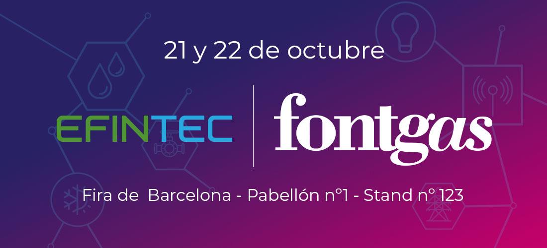 Visita EFINTEC con Fontgas